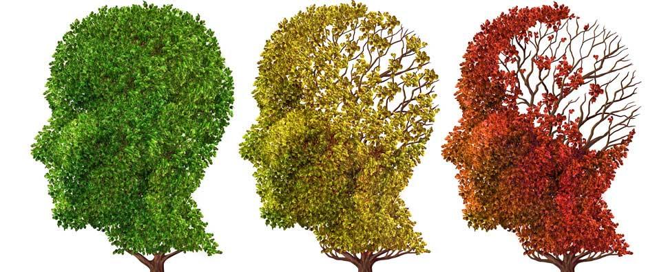 Alzheimer's Symptoms and Difficult Behaviors