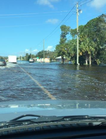 Post-Irma scene